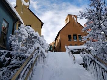 Hillside in the snow